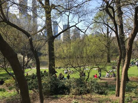 Central Park 1 - Placeres del alma