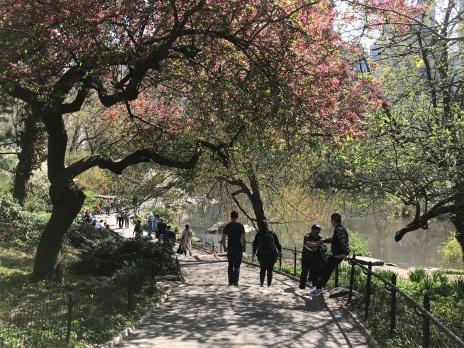 Central Park 3 - Placeres del alma